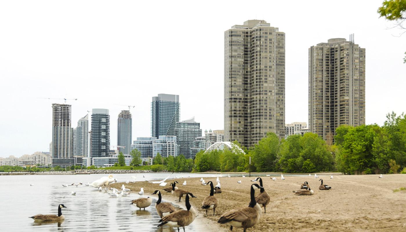 Mimico Etobicoke Toronto